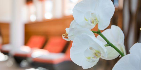 Erholung im Hotel Marten in Saalbach-Hinterglemm